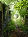 Footpath from Bridgewater Road to Berkhamsted Common - geograph.org.uk - 1450423.jpg