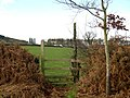 Footpath to Hollybush - geograph.org.uk - 651362.jpg