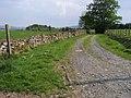 Footpath to Twyn-y Garn - geograph.org.uk - 798707.jpg