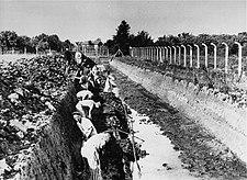 Forced labor at Neuengamme concentration camp.jpg
