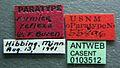 Formica reflexa casent0103512 label 1.jpg