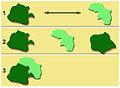 Fragmentation forestière connectivité.jpg