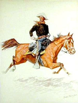 Battle of Big Dry Wash - A U.S. cavalry officer