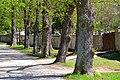 Friedhof Heiligenkreuz.JPG