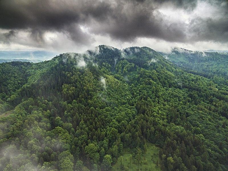 File:Góra Wołowiec.jpg