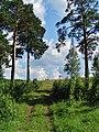 G. Miass, Chelyabinskaya oblast', Russia - panoramio (168).jpg
