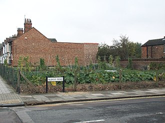 Panacea Society - The Society's allotments. The members claimed Bedford to be the original site of the Garden of Eden.