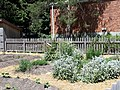 Gardens at Gibson House (4).jpg
