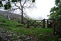 Gate by the footpath from Gill Bank - geograph.org.uk - 1338949.jpg