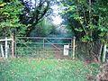 Gate on Plas Maen Drive - geograph.org.uk - 283018.jpg