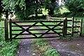Gates, Minnowburn Path - geograph.org.uk - 1407371.jpg