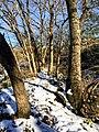 Georgia snow IMG 5239 (25076420328).jpg