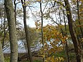 Gfp-iowa-effigy-mounds-peering-at-the-yellow-river-through-trees.jpg