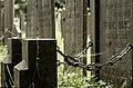 Gouda begraafplaats 333054.jpg