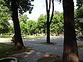 Gradski Park-Skopje (173).JPG