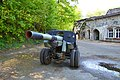 Grauerort gun.jpg