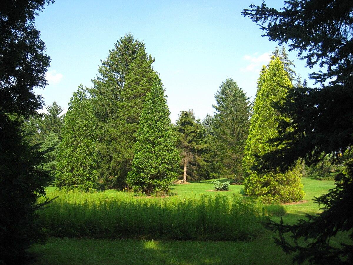 lee and virginia graver arboretum