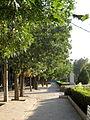 Green space - tree - sidewalk - omar khayyam planetarium - Nishapur 12.JPG