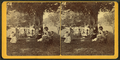 Group of people relaxing outdoors, East Jaffrey, N.H, by D. S. Rice 2.png