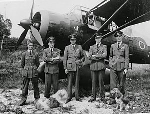 Jim McCairns - McCairns, Hugh Verity, Percy Pickard, Peter Vaughan-Fowler and Bunny Rymills with Verity's Lysander in 1943.