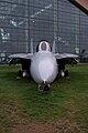 Grumman F-14D Super Tomcat 164343 HeadOn Tall EASM 4Feb2010 (14404415409).jpg