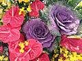 HKCL 香港中央圖書館 CWB 展覽 exhibition flowers February 2019 SSG 03.jpg