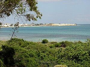 A view of old Hammamet