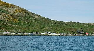 Harington Point human settlement in New Zealand