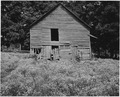 Harmony Community, Putnam County, Georgia.... Though the home of white operators range from shacks . . . - NARA - 521301.tif