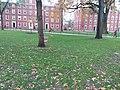 Harvard University,. November, 2019. pic.r2d Cambridge, Massachusetts.jpg