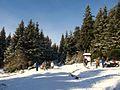 Harz wanderung braunlage brocken am dreieckigen pfahl ds wv 02 2008.jpg