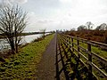 Heading south on the Trans Pennine Trail - geograph.org.uk - 1184397.jpg