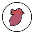 Heart-icon-realistic.png