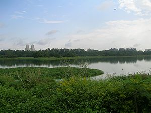 Hebbal Lake - View of the lake in 2008