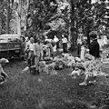 Helsingin olympialaiset 1952 - N210175 - hkm.HKMS000005-000001qt.jpg