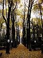 Herbstzeit - panoramio.jpg