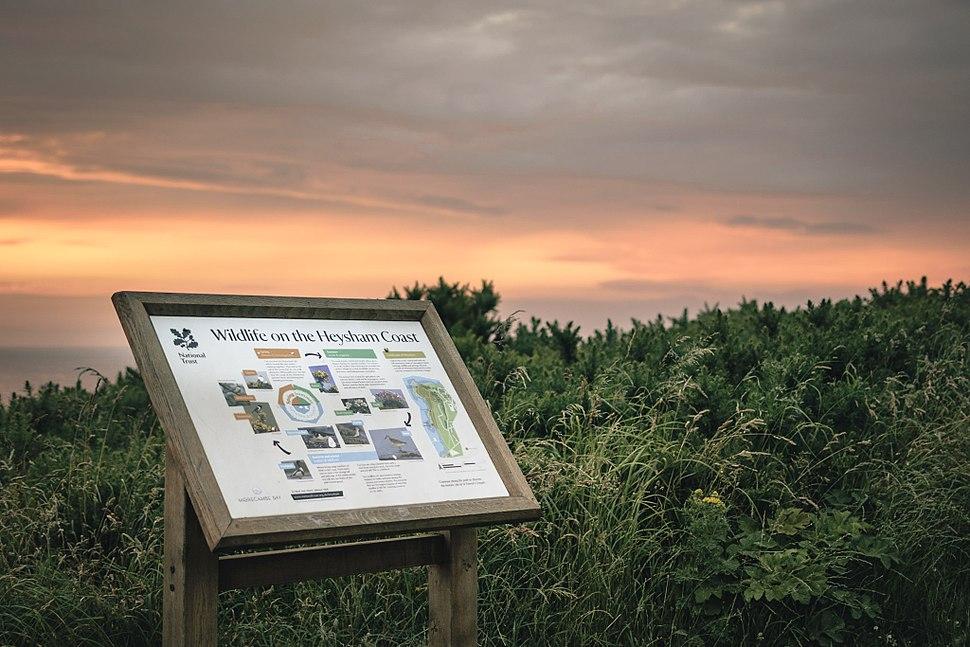 Heysham Nature Reserve