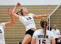 High school volleyball 3080 (37193297431).jpg