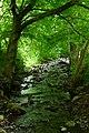 Highlands - panoramio (35).jpg