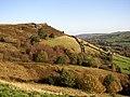 Hillside near Slaithwaite Hall, Slaithwaite - geograph.org.uk - 77697.jpg