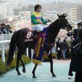 Hiruno-Damour20110403.jpg