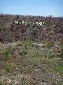Hollywood 2008 auf der Erddeponie des Steinbruchs Baresel - panoramio.jpg