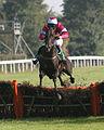 Horses racing (2882436368).jpg