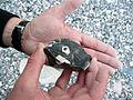 Huehnergott P1170974.jpg