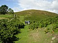 Humbleton Hill Footpath - geograph.org.uk - 365624.jpg