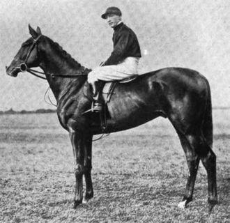 Humorist (horse) - Humorist in 1921.