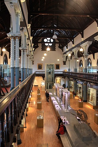 Hunterian Museum and Art Gallery - Hunterian Museum, main hall