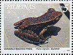 Hylarana signata 1999 stamp of the Philippines.jpg