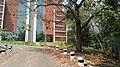 IIST Library image glass.jpg