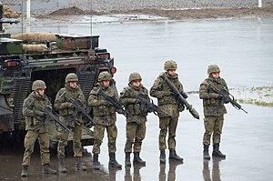 "Panzergrenadier - Panzergrenadier squad (""mechanized infantry"") of the German Army."